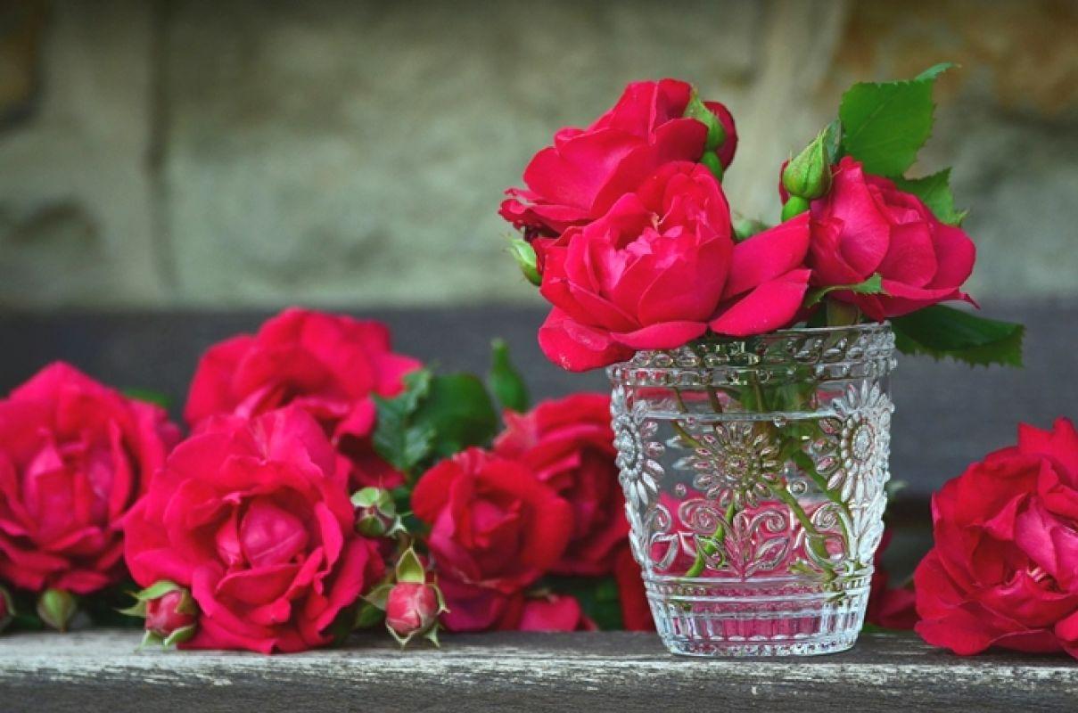 roses-821705_1280.jpg